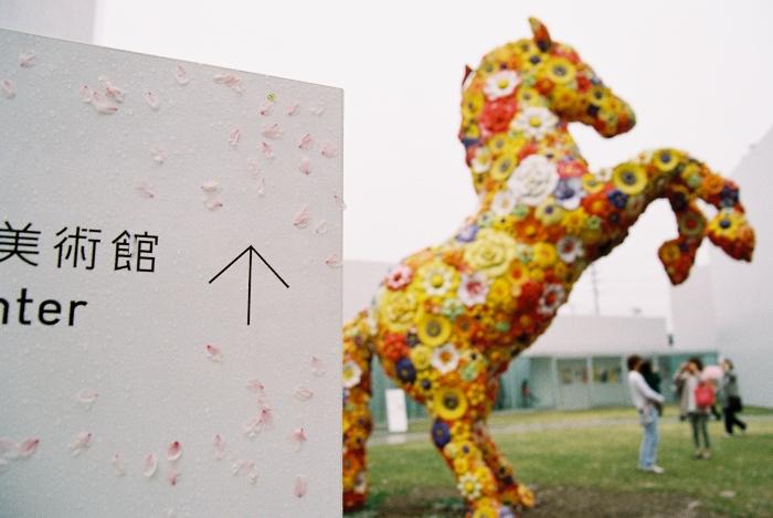 十和田市現代美術館-07.jpg