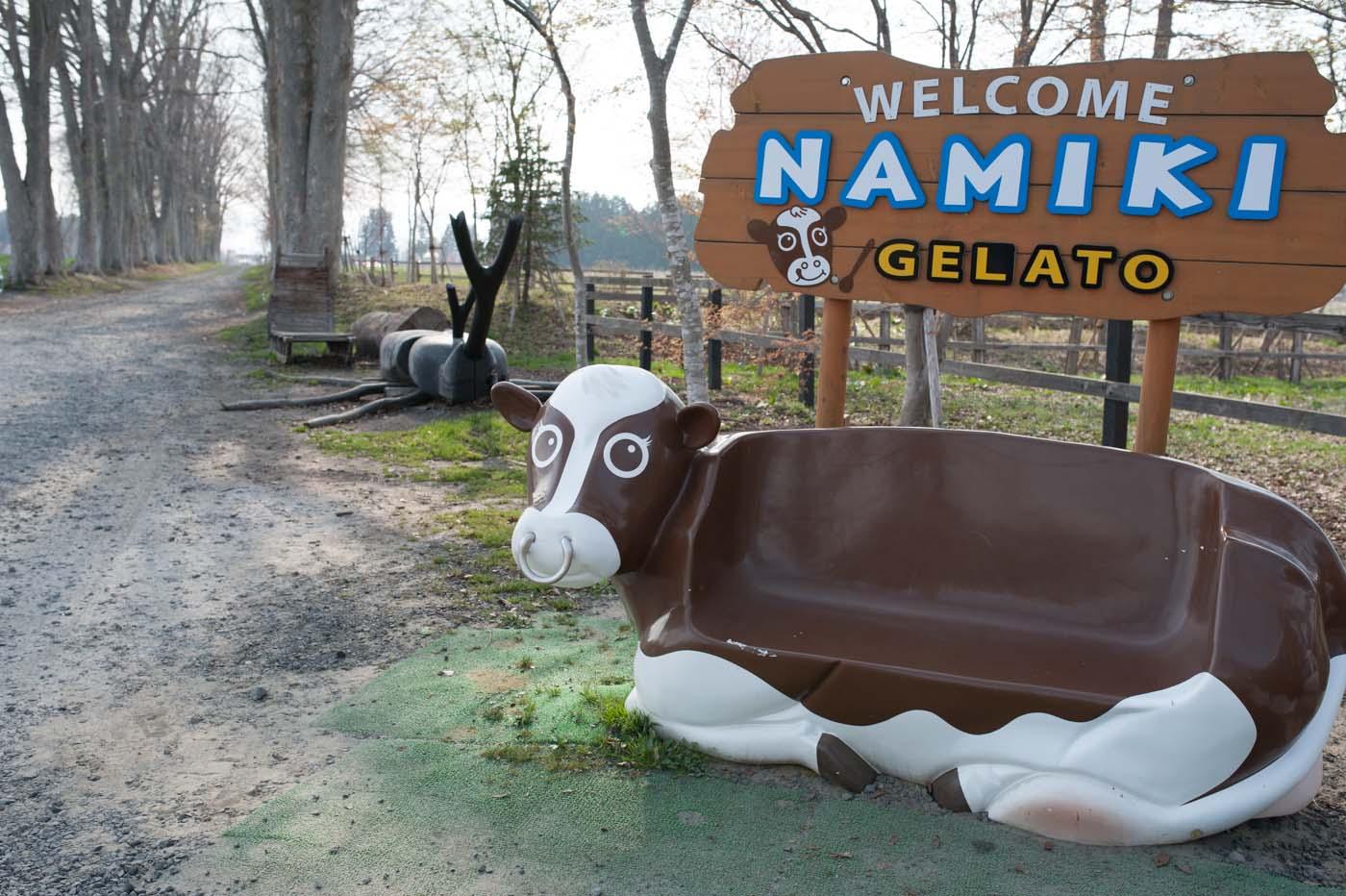 NAMIKI-01
